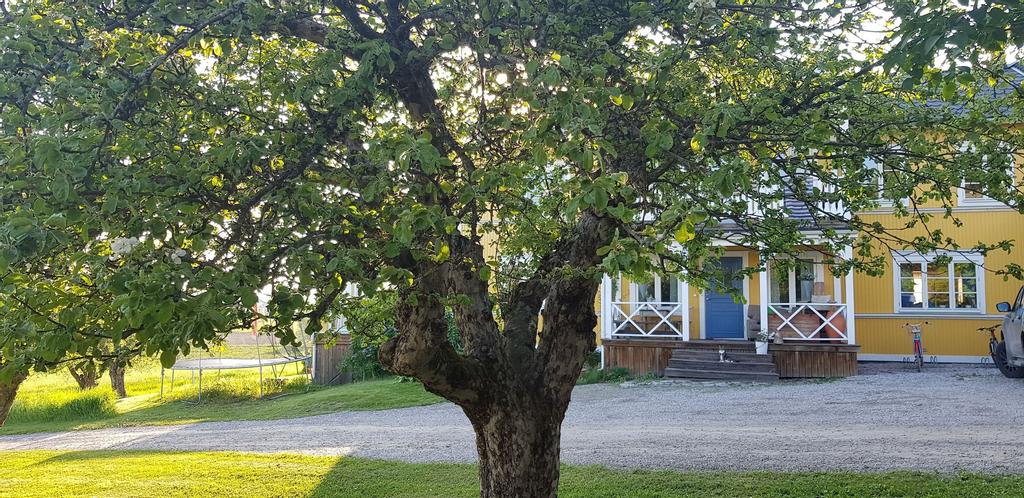 Nygården Bed&Breakfast, Nordanstig