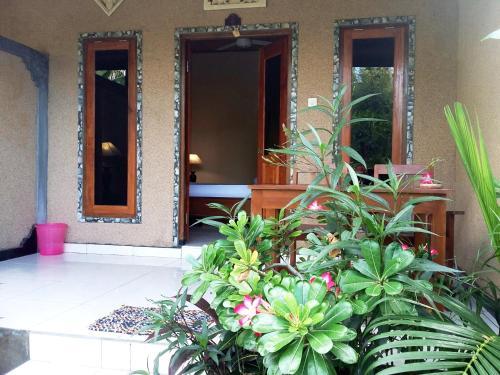 Molleh Guest House, Buleleng
