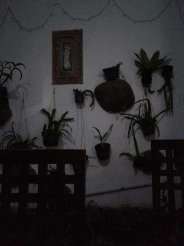 GEDE IJEN'S HOUSE, Banyuwangi