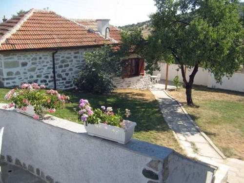 Fighouse, Ivaylovgrad