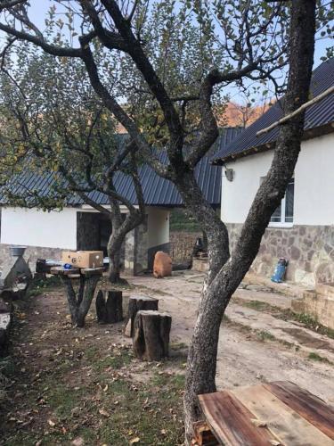 GUEST HOUSE FERO BISHNICE, Pogradecit