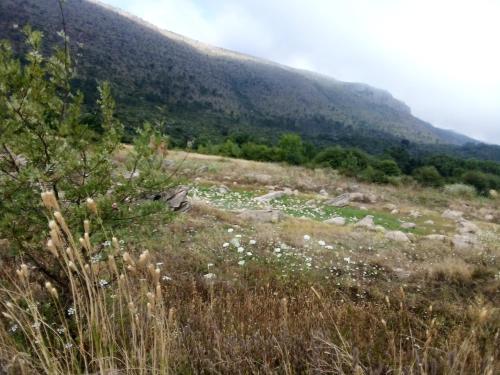 Colina do Sol, Alcanena