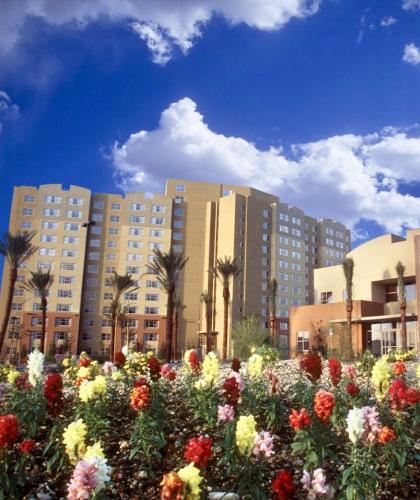 Grandview Resort A for EDC, Clark