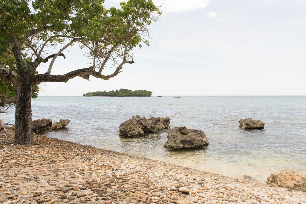 Crawfish Beach Suite,