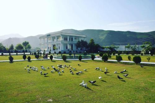 Orange Lake Resort, Hazara