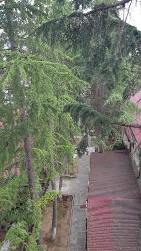 Апартаменты Орион, Sokhumi