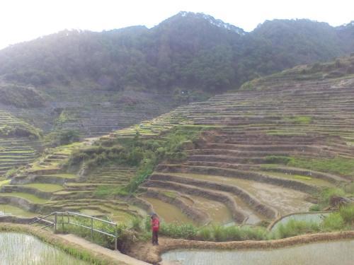 Chen's Sakyaan Homestay, Bontoc