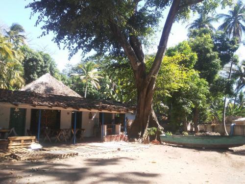 Pachamama Bungalows, Tamanique