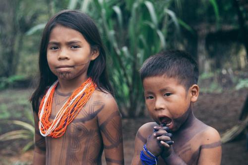 Hospedaje wounaan indigena, Chepigana