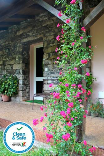 Quinta do Pantano, Agro Turismo, Machico