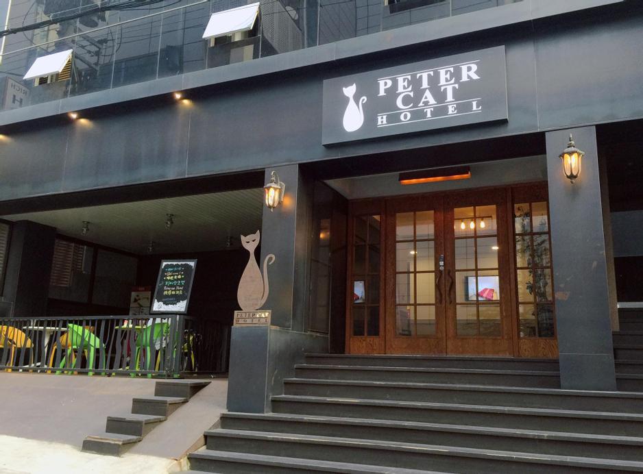 Petercat Hotel Sinchon (Hongdae), Seodaemun