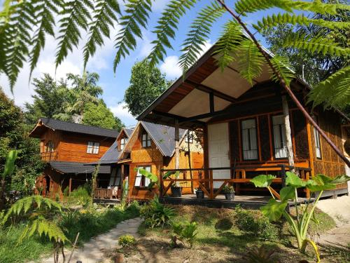 Canyon Jungle Stay, Agam