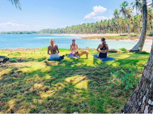 Baoba Breeze Bed & Breakfast- beachfront paradise, Cabrera