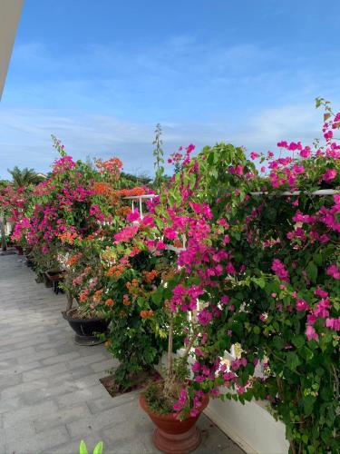 Summering Hotel, Ninh Hòa