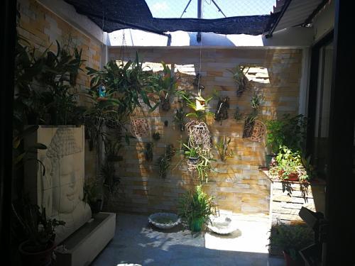 Casa de Los Cubanos, Guamo