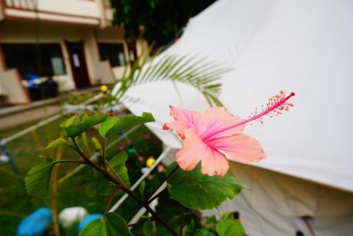 VITA APARTMENT, Dumaguete City