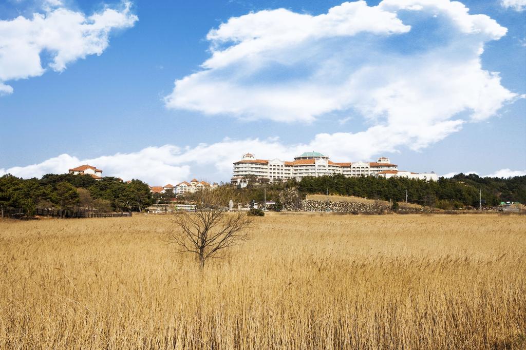Sol Beach Hotel & Resort Yangyang, Yangyang