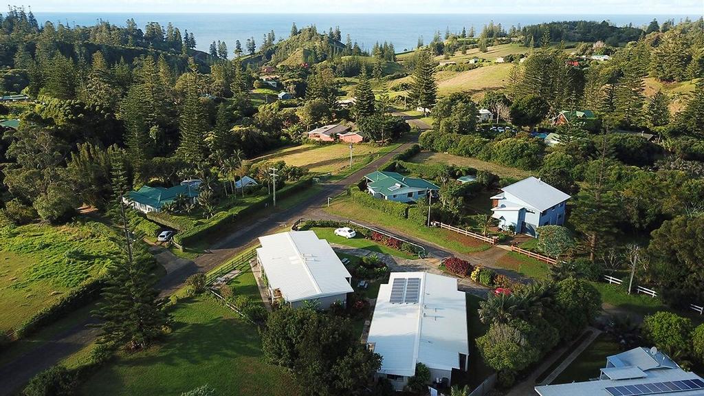 Hibiscus Regal, Norfolk Island