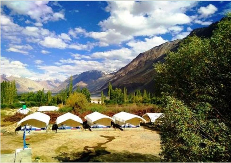 Shyok camp, Leh (Ladakh)