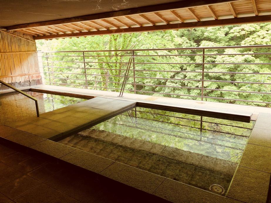 Hotel Ichiyotei, Minakami