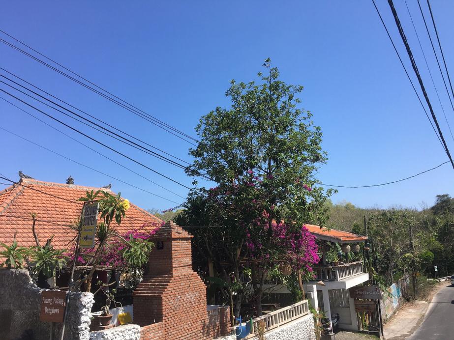 Padang Padang Breeze, Badung
