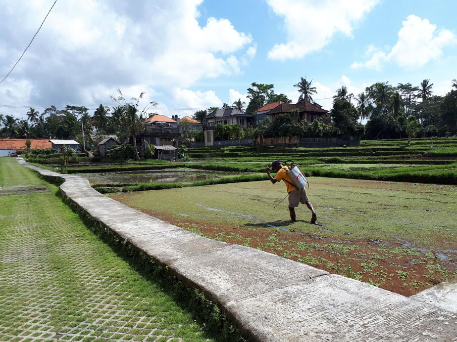 Villa Kirani Ubud, Gianyar