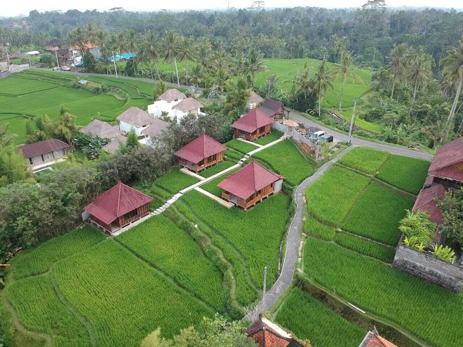 Ubud Sawah Homestay, Gianyar