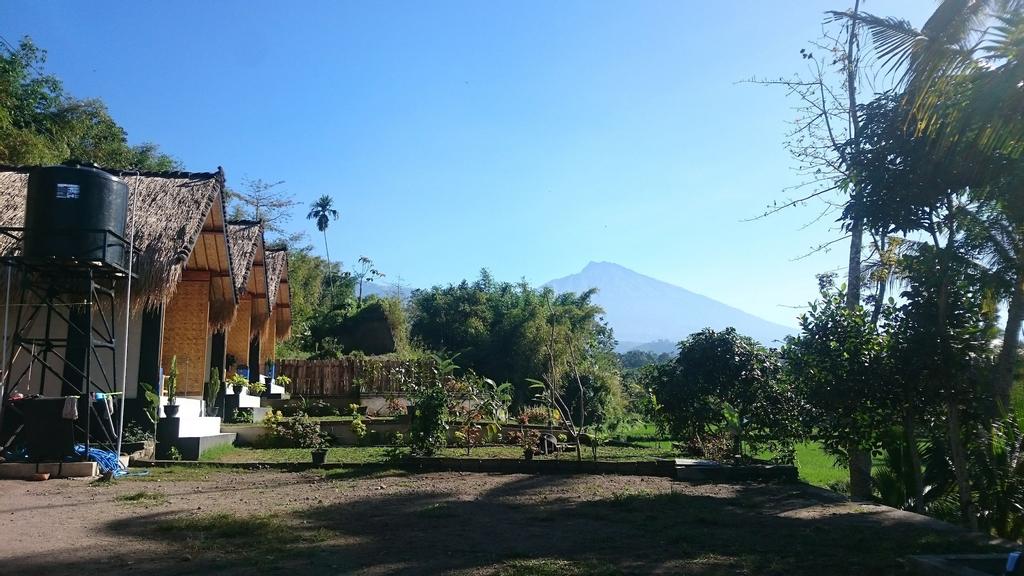 Aryasuta Bungalow, Lombok Timur