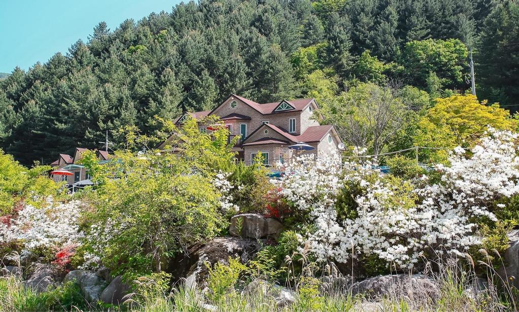 Yedam Healing House, Hongcheon