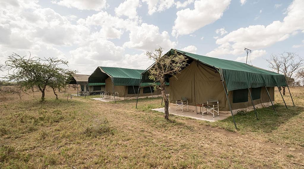 Serengeti Wild Camps, Serengeti