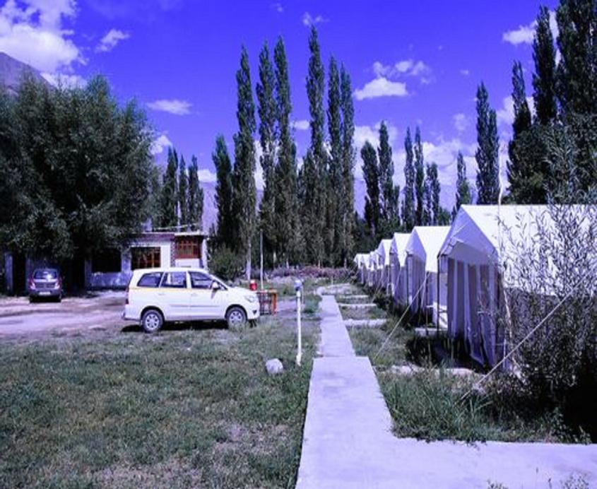 Mountain Camp, Leh (Ladakh)