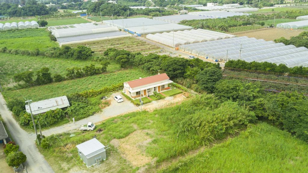 Kaeruya, Nakijin