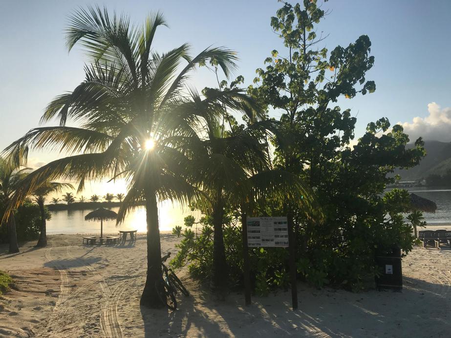 Eden Island Gem,