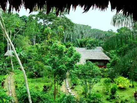 Wasai Tambopata, Tambopata
