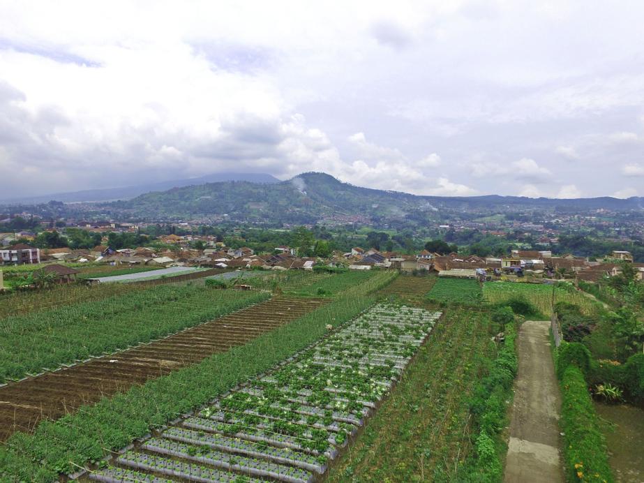 Vila Bunga Merah Gelatik, Bandung