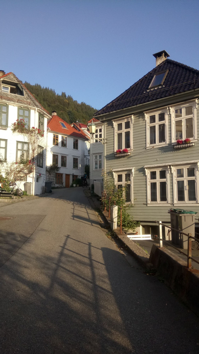 Center Villa, Bergen