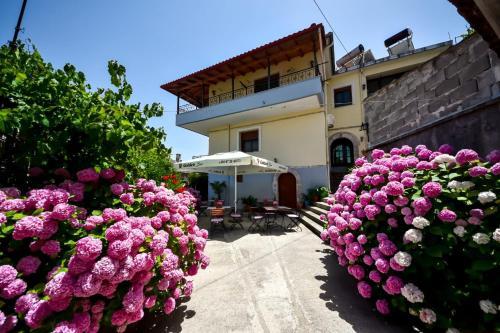 Hotel Palorto, Gjirokastrës