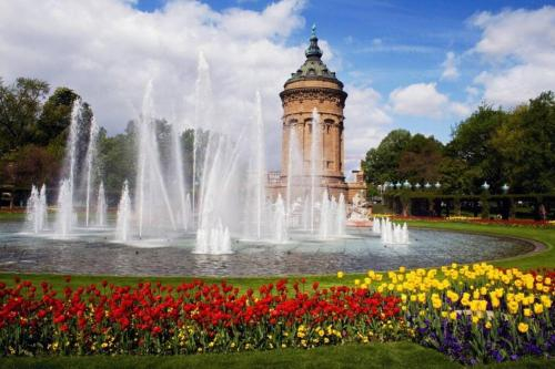 Nice City Apartment in best location with fast wifi, full equipped kitchen, smart tv, calm garden et, Mannheim