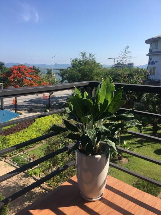Bamboo Hotel & Apartment, Hạ Long