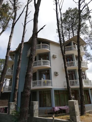 HOTEL SHEKVETILI, Ozurgeti