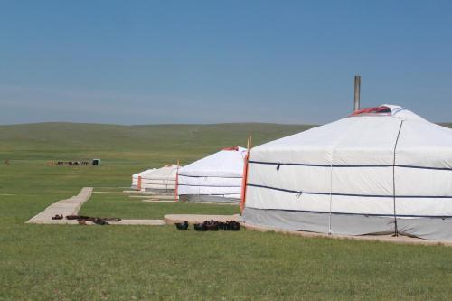Nomad Horse Camp, Sergelen