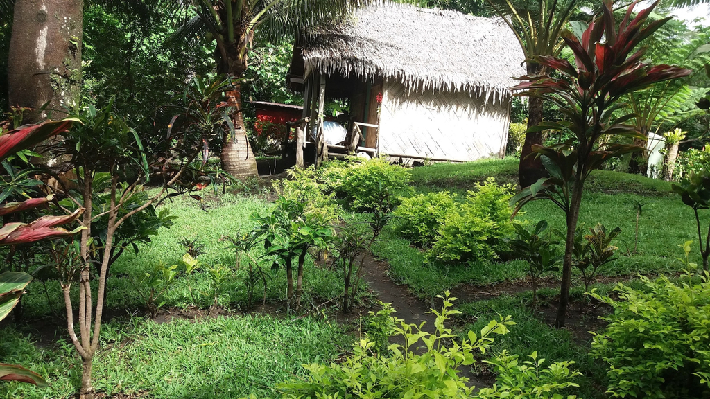 Tanna Eco Venture Bungalow, South West Tanna