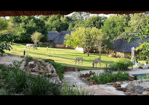 Charangwe Hurungwe Safari Lodge, Hurungwe