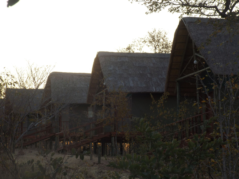 Lion Roars Lodge, Chobe