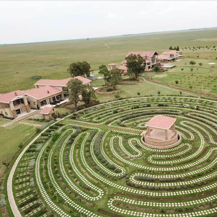 R'new Pecan Farm & Wellness Centre, Fezile Dabi