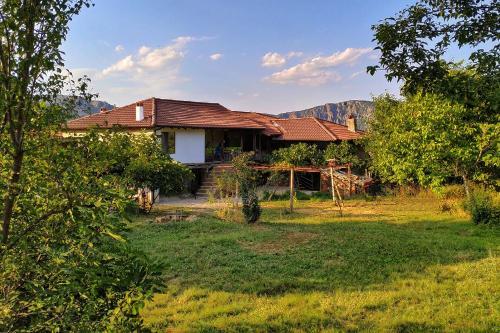 The Old Nest, Madzharovo