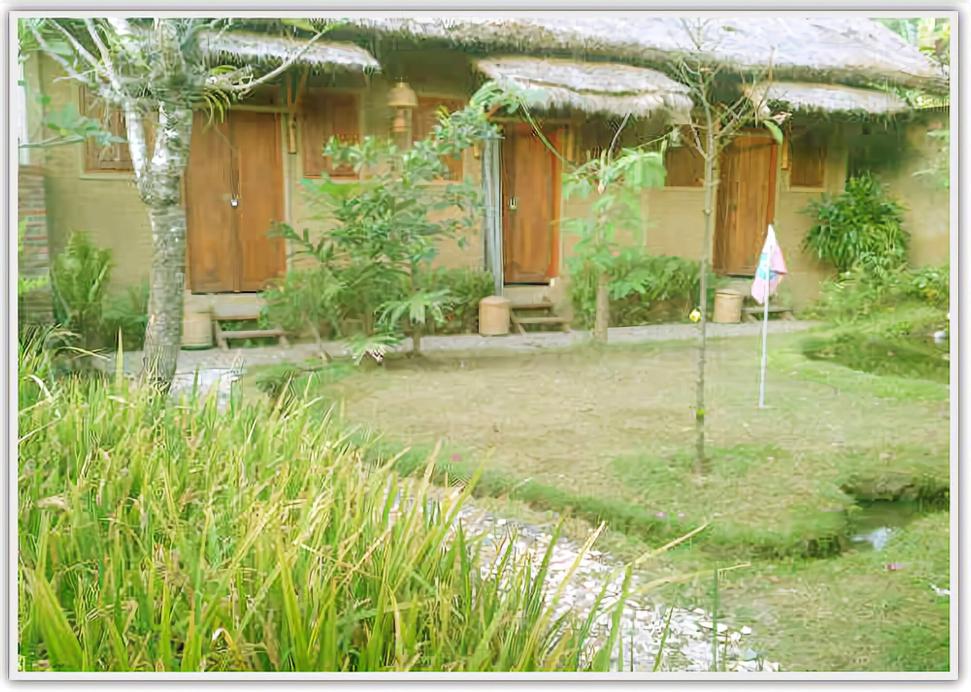 Baleku Homestay Gili Trawangan, Lombok