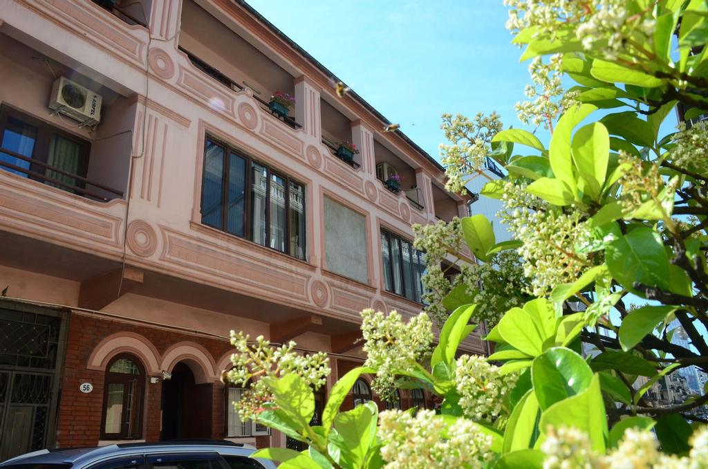 Guesthouse and Hostel Batumi Globus, Batumi