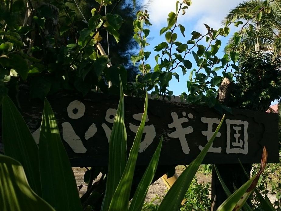 Paparagi Oukoku, Motobu
