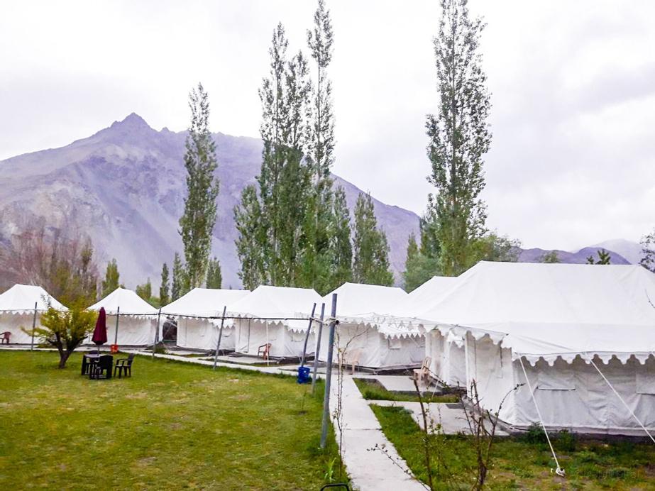 Paradise North Camp, Leh (Ladakh)